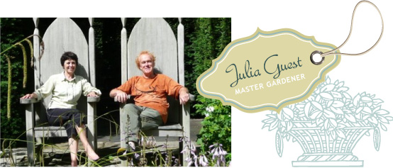 Julia Guest
